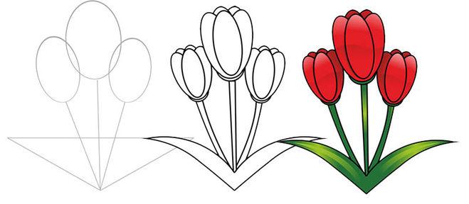 Как нарисовать тюльпан карандашом поэтапно детям