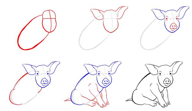 свинья рисунок поэтапно