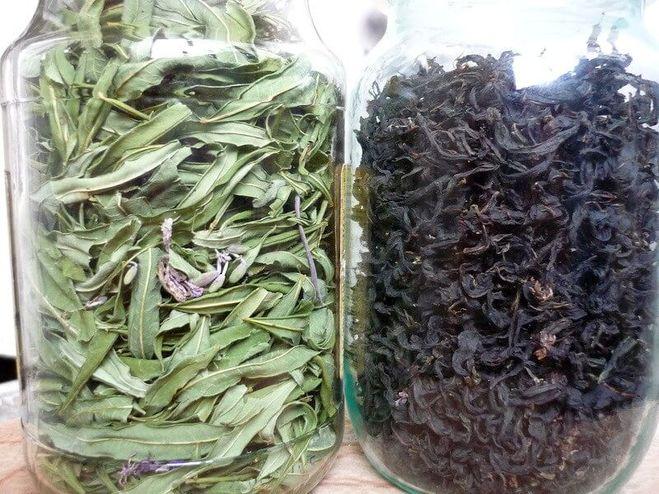 сушим травы для чая