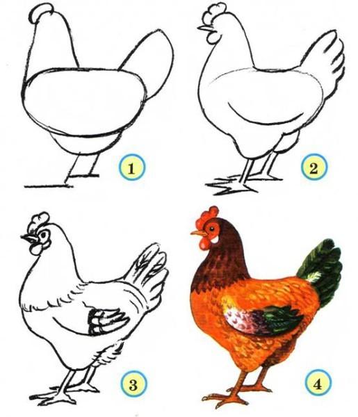 Как рисовать петуха 3 класс