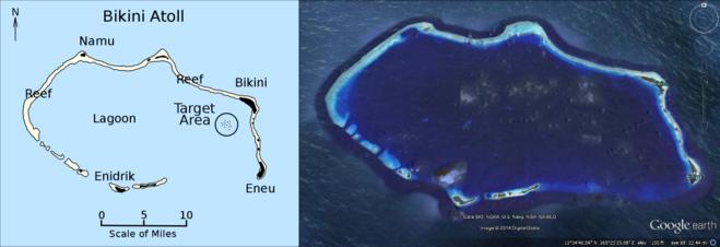 Остров бикини кроссворд