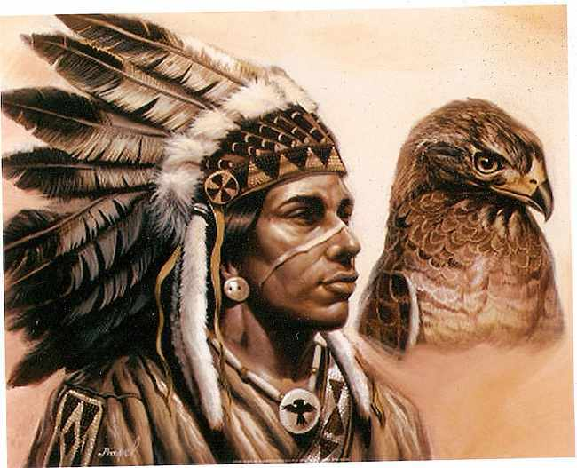 """indigenous peoples of the americas and native peoples essay Among the indigenous peoples are those of the americas (for example • the term """"indigenous"""" has prevailed as a generic term for many years."""