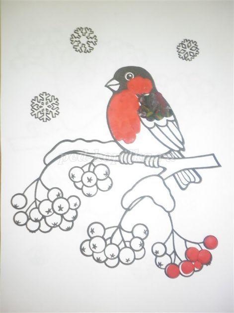 Свинка Раскраска снегиря с рябиной 5
