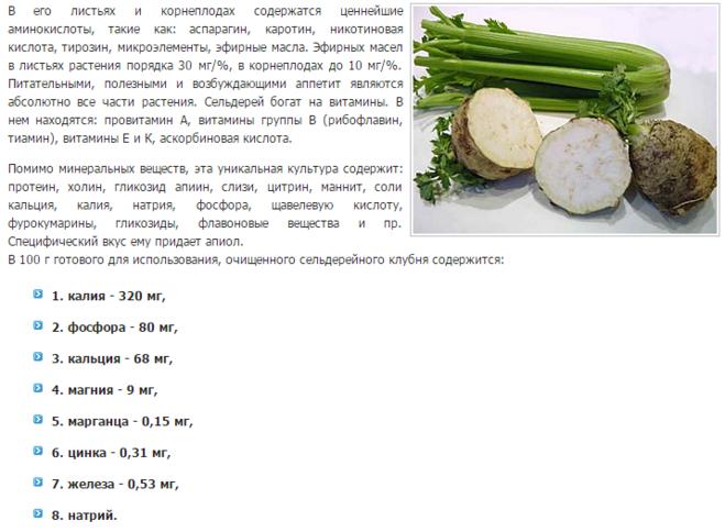 Корень сельдерей польза и вред рецепты 72