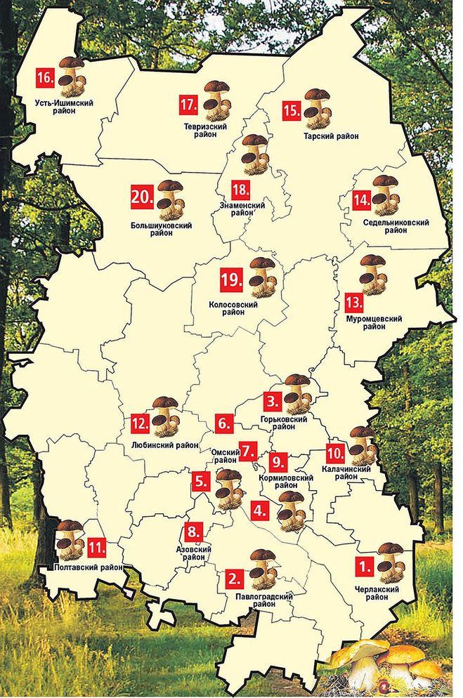 карта грибных мест Омской области