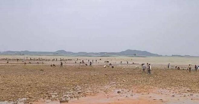 в Тайланде ушла вода от побережья