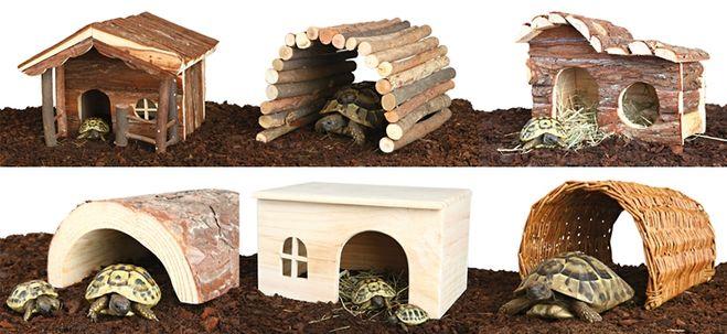 Как сделать черепахе домик фото 876
