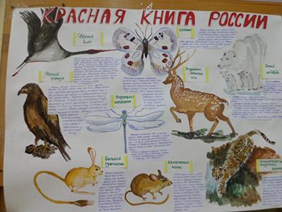 Красная книга с животными своими руками 55