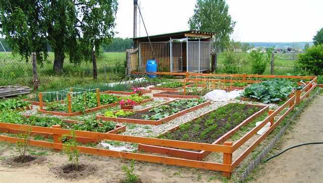 Фото огород своими руками