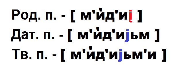 мидиями транскрипция