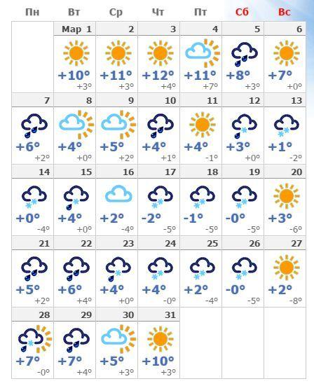 погода на 1 месяц в сочи