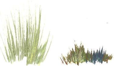 рисунок трава своими руками