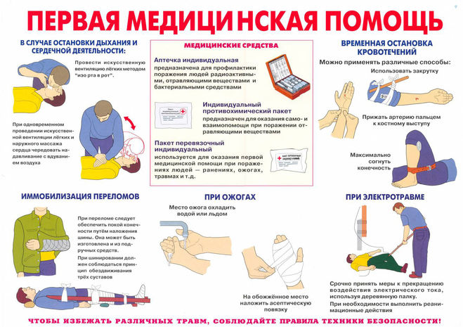 buy Active Baby, Healthy Brain: 135 Fun Exercises