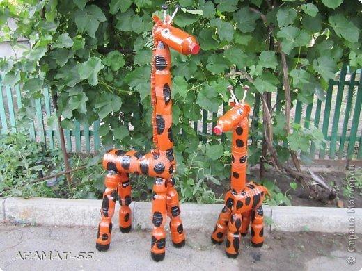 Жираф с бутылок