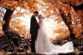 Благоприятные для свадьбы дни в ноябре