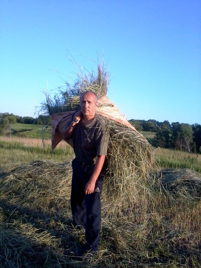 Я переношу сено