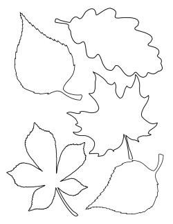 Шаблон осенних листьев из фетра