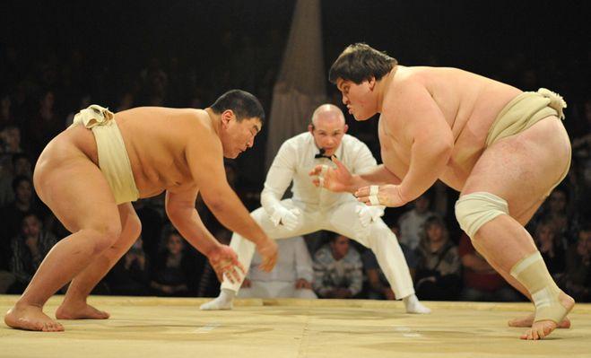 борец сумо, пистолетный выстрел, слой жира