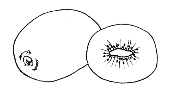 Киви фото фрукт