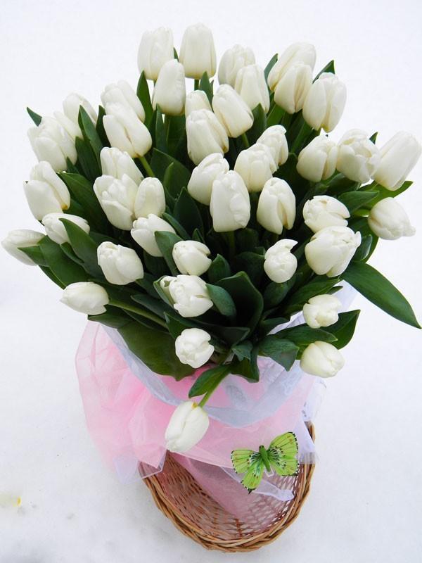 Домодедовская цветы дешево