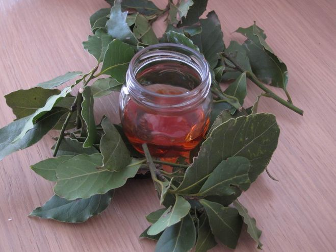 Лечение настойкой лаврового листа