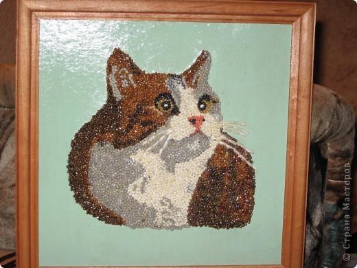 Поделка кошка из разных материалов 71