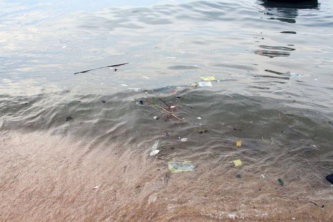 Мертвая рыба - горести, утраты.житейский сонник.