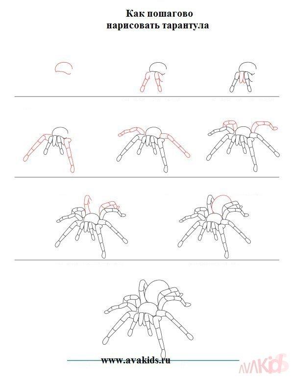 как на схеме подрисовывают