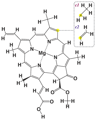 vitamins pigments and processing Vitamin a & visual cycle proposed a relationship between yellow plant pigments (beta-carotene) and vitamin a in order to properly process the.