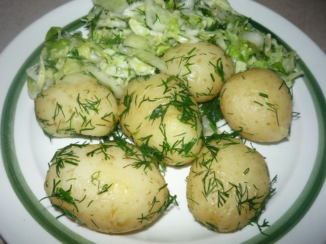 Картошка сметане рецепты фото