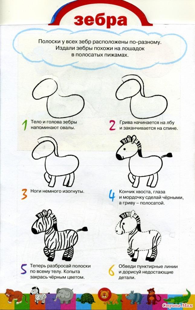 Как поэтапно нарисовать зебру детям