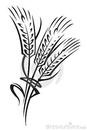 можно окрасить пшеницу.