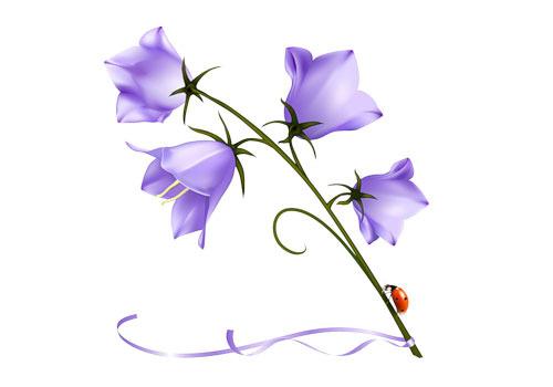 Как нарисовать цветочек