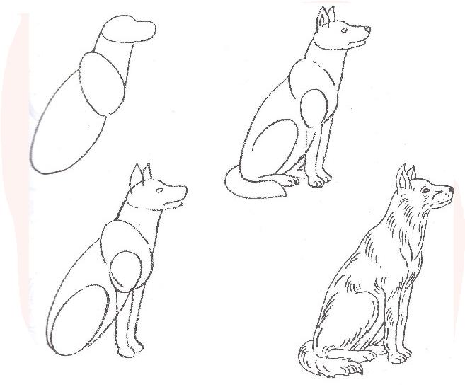 Как научиться рисовать анга