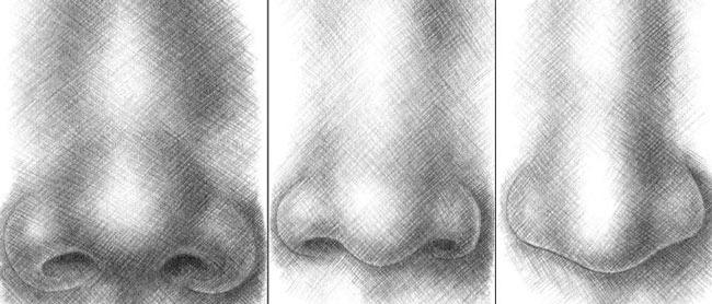 с круга, это кончик носа