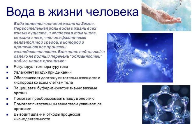 Роль воды в жизни организмов реферат 5603