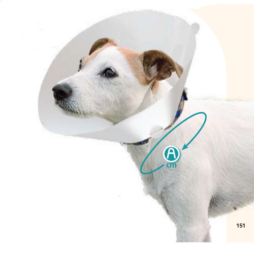 Воротник для щенка