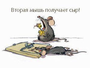 как нарисовать поговорку, пословицу о мыше, крысе