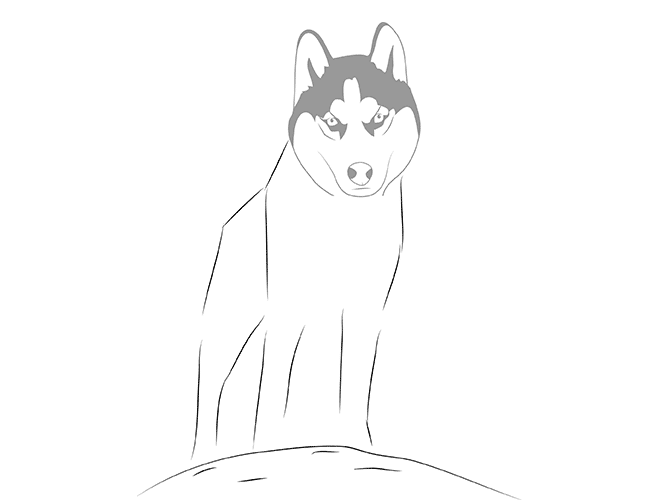 Начинаем рисовать лапы собаки