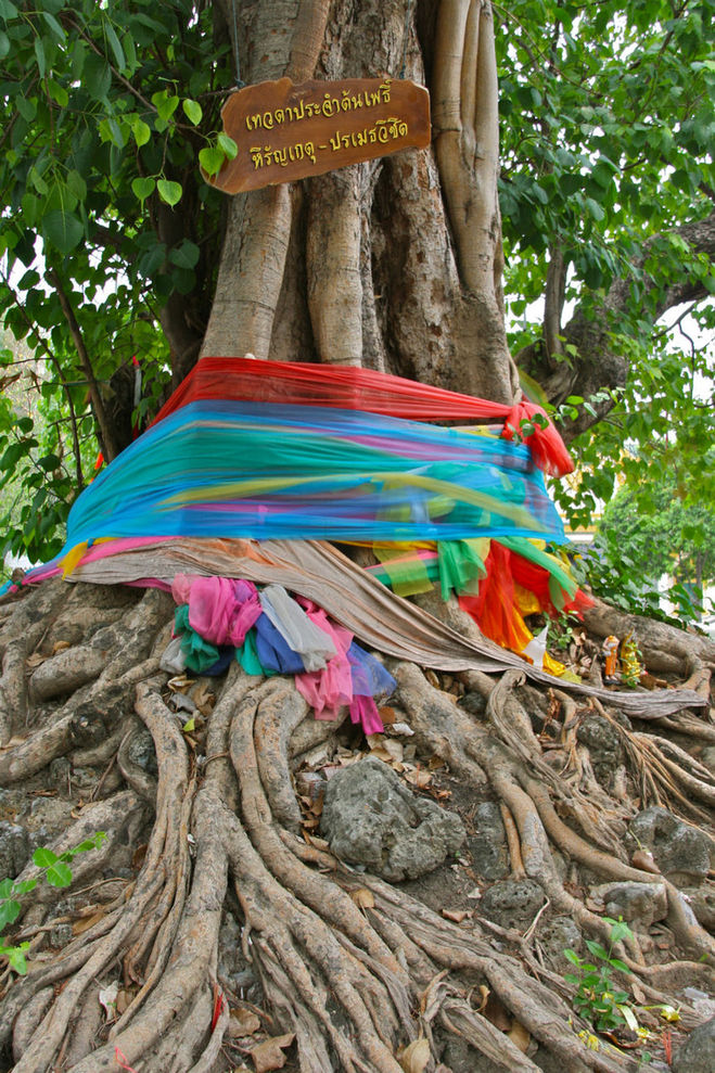 зачем привязывают ленточки к деревьям ищете работу Работа