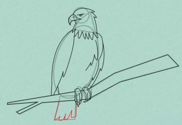 Как нарисовать орла карандашом поэтапно.