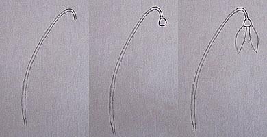 как нарисовать первоцвет 1