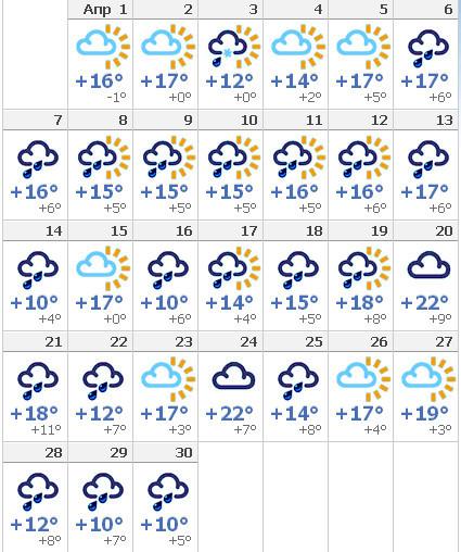 рады любым погода в москве 11 августа все основные