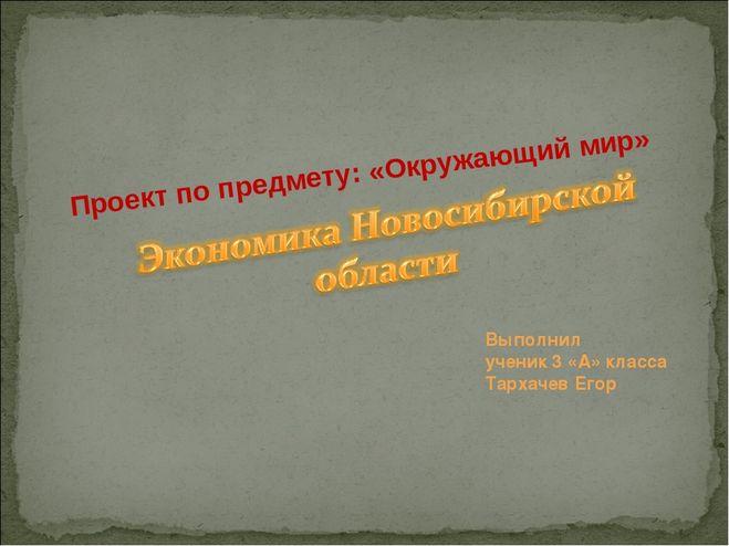 Проект Экономика родного края Новосибирская область 3 класс