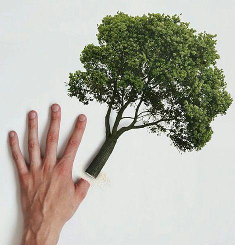 Рисунок плаката берегите растения