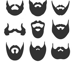 Предложения со словом борода