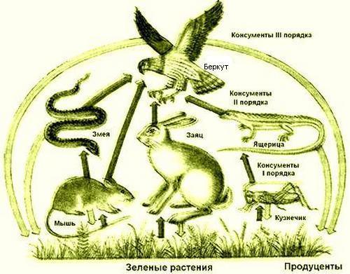 Схема питания к степи