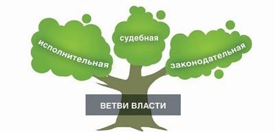 Схема дерева власти с ветвями 297