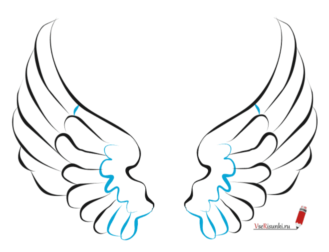 Как нарисовать крылья карандашом поэтапно
