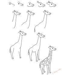 Как нарисовать жирафа, как рисовать жирафа поэтапно для детей